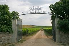 Villa-Yustinajpg